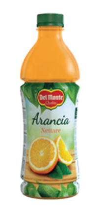 DEL MONTE PET ORANGE NECTAR 6x1lt